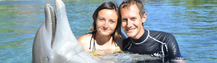 Rencontre avec un dauphin, Moorea, Polynésie Française, le 24/08/2013